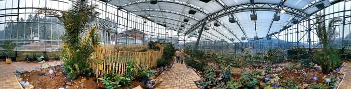 Das Tropenhaus in Kleintettau - hier wachsen tropische Früchte auch im Winter.